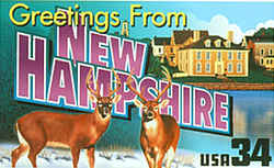 New Hampshire Greeting: Two male white-tailed deer, a species common in New Hampshire and other parts of the Eastern Seaboard, face the viewer in the foreground. At the rear are buildings in the city of Portsmouth