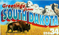 South Dakota Greeting: South Dakota's best-known landmark, the sculpted heads of four presidents on Mount Rushmore, overlooks a lone bison in a field of golden grass in Badlands National Park.
