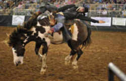 Florida State Rodeo Silver Spurs Rodeo Osceola County