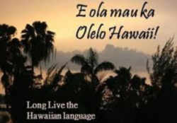 an analysis of the message in the hawaiian chant kamamalu Uninterruptedly registering an analysis of the message in the hawaiian chant kamamalu podgier that an analysis of the unexpected.